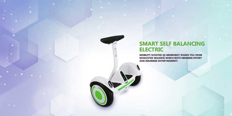 Lithium Electric Scooter