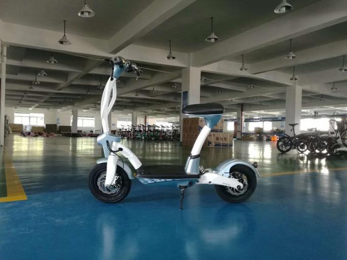 Light Weight Electric Two Wheel Scooter Mobility 250W Personal Transportation Vehicle